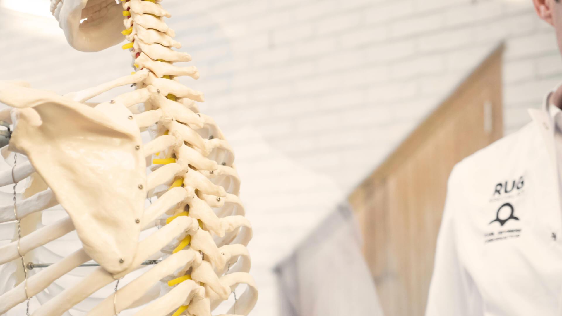 Begeleidende afbeelding bij uitleg over vooroordelen over chiropraxie